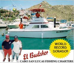 Cabo fishing tips tutorials articles things to know for Cabo fishing seasons