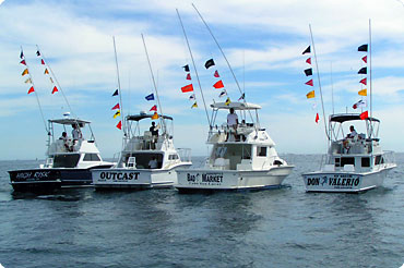 cabo fishing charters best charter boats and captains in